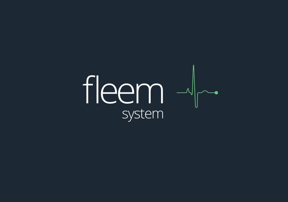 Logo-Fleemsystem